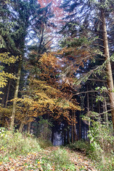 IMG_2398-Bearbeitet.jpg (MSPhotography-Art) Tags: morning autumn nature misty germany de landscape deutschland nebel outdoor herbst natur wolken alb landschaft wandern wanderung badenwrttemberg burghohenzollern albstadt albtrauf schwbschealb