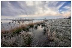 Sunset Waterakkers_003 (cees van gastel) Tags: nature water skyline clouds landscape frozen skies bevroren outdoor horizon natuur wolken breda riet landschap luchten sigma1020mm rijp einder ceesvangastel canoneos40d waterdonken waterakkers