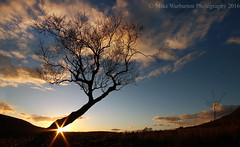 `Sunset` (Mike Warburton Photography) Tags: trees sunset sky sun tree wales clouds canon landscape dusk sillouette silentvalley ebbwvale 70d sigmawideangle