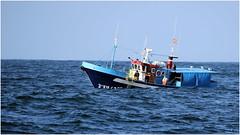Barcos (jjbesadarico) Tags: old sea espaa agua ship galicia fisher turismo pesca olas gaviotas pontevedra ria riasbaixas atlantico portonovo sanxenxo sanjenjo pesqueros