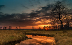 Spring evening warmth (piotrekfil) Tags: sunset sky sun tree nature water field clouds reflections river landscape riverside pentax poland piotrfil