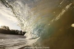 IMG_0108 copy (Aaron Lynton) Tags: beach canon big barrel wave 7d spl makena shorebreak lyntonproductions