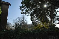 ballinasloe_165 (HomicidalSociopath) Tags: ireland cemetery architecture spring nikon crosses april ballinasloe d60
