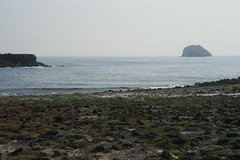 IMG_7643 (chupalo) Tags: lavarocks islasplaza