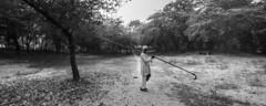 (ayashok photography) Tags: bw india monument asian blackwhite nikon asia indian taj tajmahal agra desi bnw bharat bharath desh barat cwc uttarpradesh yamuna barath mugal 2013 shajahan ayashok nikond700 tokina1735mm chennaiweekendclickers ayashokphotography mehtabbaghgarden mehtabhgarden agraday10680