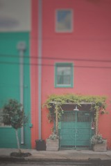 """watermelon mint (listening to """"half time"""", amy winehouse) (jeneksmith) Tags: city pink green coral canon spring vines louisiana colorful paint doors neworleans mint doorway bywater crescentcity springtime bigeasy"""