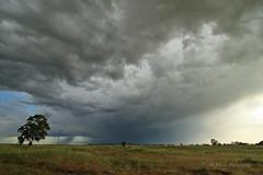 Springtime thunderstorm rolls through the foothills (trifeman) Tags: california bw foothills rain clouds canon spring sierra tokina 7d april thunderstorm sacramento goldcountry 2016 tokina1116mm canon7dmarkii