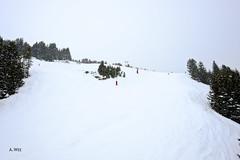 Sources ski trail (A. Wee) Tags: france alps courchevel sources  troisvalles les3valles
