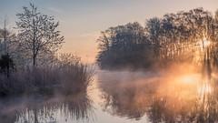 Clumber Park Sunrise.jpg (Dylan Nardini) Tags: uk trees england sky clouds nikon padley clumber d810
