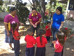 12604803_721463324657646_38494277383397119_o (dernst) Tags: garden preschool huerta preescolar