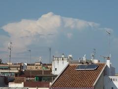 Tempestes 51 - Jordi Sacasas