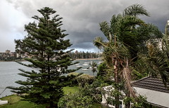 Storm front, Manly, 30/01/16 (2) (geemuses) Tags: storm rain weather hail manly nsw sydneyharbour wildweather manlycove strongwinds thudnerstorm
