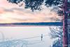 Villa Elfvik @ Winter II (Joni Salama) Tags: espoo suomi finland talvi meri maisema vesi laajalahti luonto maat vuodenajat