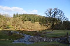 DSC_0057 (Lord Edam) Tags: winter nature water grass wales river stones walk wildlife betwsycoed conwy afon llugwy