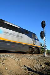 Amtrak 741 (caltrain927) Tags: california ca railroad train pacific union corridor capitol amtrak passenger signal uss niles uprr emd jct f59phi colorlight