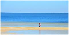 Northshore Park - St Petersburg, Florida (lagergrenjan) Tags: park beach st florida north petersburg shore