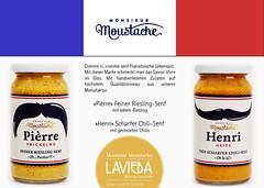 Monsieur-Moustache-LAVIEBA-012016