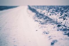 serenity (Smo_Q) Tags: winter poland samyang85f14 pentaxk3ii