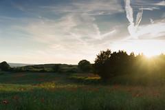 DSC04559 (wheelsy1) Tags: walking derbyshire poppy chesterfield sheepbridge poppyfield unstone richardwiles