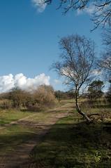 Bloembergweg (Erik Reijnders) Tags: holland wolken duinen kennemerduinen heemskerk sigma185028 duinreservaat nikond300