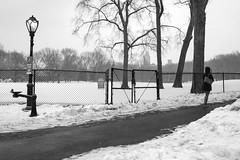 XT1-02-22-15-122 (a.cadore) Tags: nyc newyorkcity blackandwhite bw landscape pentax centralpark candid 28mm uptown fujifilm hff xt1 smcpm28mmf28 pentaxmsmc28mmf28 fujifilmxt1