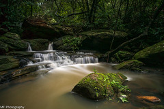 It's like the tropics round here (Mick Fletoridis) Tags: longexposure summer storm waterfall sydney australia leefilters sonyimages sonya7s