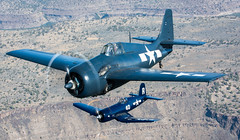 Pacific Duo  FM-2 Wildcat & F4U-7 Corsair - Explore (jetguy1) Tags: fighter wwii explore corsair wildcat warbird fm2 grumman