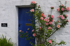 Rose Cottage (Lancashire Lass ...... :) :) :)) Tags: door pink blue spring quote may rosecottage