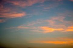 Nubes de colores (Races annimas) Tags: costa arbol atardecer mar colombia pescador caribe pescar pelcano islafuerte arbolquecamina