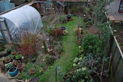 Looking Down on the Back Garden - February 2016 (basswulf) Tags: uk england garden unmodified lenstagged oxford backgarden 32 1855mmf3556g polytunnel d40 3008x2000 permissions:licence=c image:ratio=32 201602 normcres lookingdownonthegarden 20160217