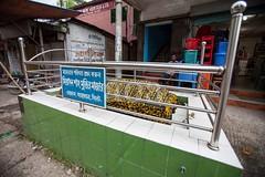 5D8_7213 (bandashing) Tags: street england grave manchester sharif shrine cement coffin fenced sylhet bangladesh socialdocumentary dargah aoa shahjalal bandashing akhtarowaisahmed