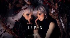 Lapin_main (nightnuit.com) Tags: rabbit doll bjd nuit lapin balljointeddoll faceup nightnuit bjdfaceup