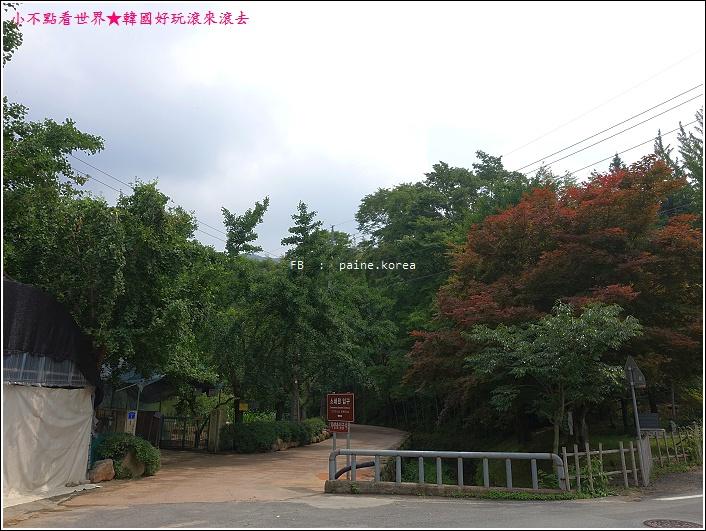 潭陽瀟灑園 (2).JPG