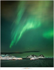 Aurora Borealis, Lofoten, 2016 (nandOOnline) Tags: winter beach strand vakantie nacht sneeuw aurora lofoten northernlights auroraborealis februari fjorden svolvr noorwegen 2016 sterren noorderlicht svinya svolvr austvgyalofoten austvgyalofoten svinya svinyavalen svinyavalen