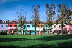 141101 burano 505 (# andrea mometti   photographia) Tags: venezia colori burano merletti