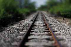 Railway Tracks (Jovan Jimenez) Tags: trees tree nature field forest train photoshop canon eos rebel is waterfall track bokeh tracks efs1855mm railway glen il shallow 1855mm preserve depth efs xsi trax shallowdepthoffield tiltshift lemont f3556 450d 60439 bokehful veganphotographer il60439