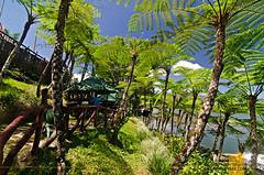Lake Sebu, South Cotabato (Lakad Pilipinas) Tags: cruise lake asia southeastasia philippines punta isla asean mindanao 2016 lakesebu tboli southcotabato lakadpilipinas christianlsangoyo