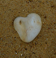 Covehithe + Benacre (little_auk) Tags: trees beach coast suffolk heart benacre covehithe
