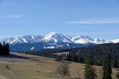 Widok na Tatry z okolic Bukowiny Tatrzańskiej