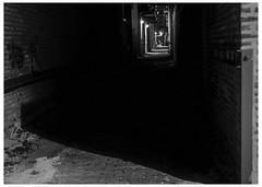 When Your Restless Heart Comes Back (swanksalot) Tags: blackandwhite bw chicago night alley availablelight noflash westloop