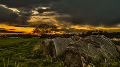 forgotten straw bales (bocero1977) Tags: trees light sunset sky sun storm tree green nature colors field weather silhouette clouds germany landscape nikon mood sundown outdoor fineart straw bales hdr strawbales