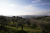 IMG_4812 (Valentina Ceccatelli) Tags: trees sunset italy canon eos no tuscany 5d prato valentina markii carmignano ceccatelli valentinaceccatelli tramontocountry