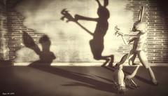 Playing Shadows (kimeu007) Tags: shadow rabbit mouse conejo sombra saltamontes crikett