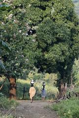 Maikal hills - Chhattisgarh - India (wietsej) Tags: india forest landscape women sony hills chhattisgarh maikal a77ii minolta100mmf28dafmacro