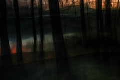 * (sedregh (on/off)) Tags: trees painterly me multipleexposure bume icm intentionalcameramovement