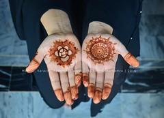 Mehndi, Karachi, Pakistan (Ameer Hamza) Tags: pakistan woman black classic girl hands single april henna karachi mehndi karachiwalla 2016 ppa pakistaniphotographer
