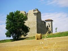 Ruine (Doonia31) Tags: champs ruine pierres agriculture campagne cultures arbre chteau paille rouleau gers sudouest
