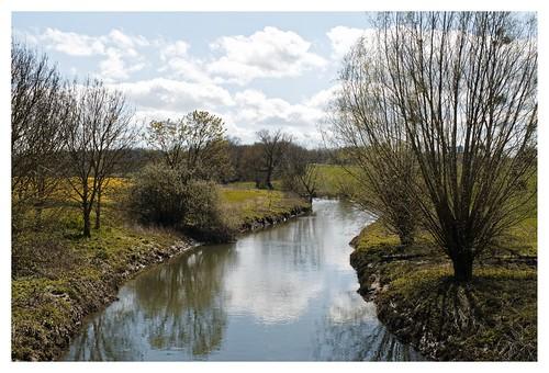 L'Yerre à Gregy-sur-Yerre - Seine-et-Marne