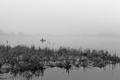 Misty morning #2 (Unicorn.mod) Tags: blackandwhite bw mist water monochrome fog river spring 2016 canonef24105mmf4lisusm canoneos6d