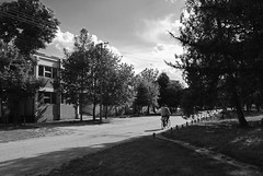 Biciklista (Sareni) Tags: road trees windows light blackandwhite bw man tree grass buildings spring cyclist shadows drum serbia center april put vojvodina twop srbija banat 2016 drvo trava prolece svetlost centar drvece senke prozori alibunar crnobela biciklista domzdravlja juznibanat sareni
